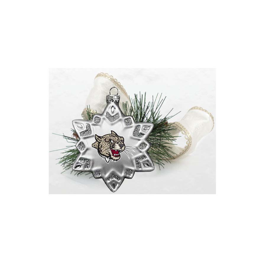 Image For ORNAMENT GLASS SNOWFLAKE