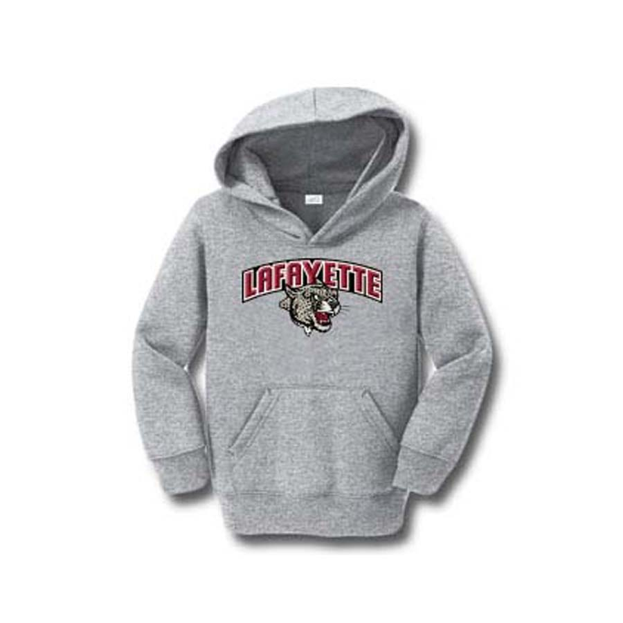 Image For TODDLE PARKER HOODIE GREY